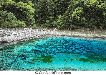 Colorful lake in Jiuzhaigou, Sichuan