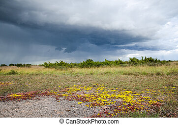 Colorful landscape with bad weather coming up
