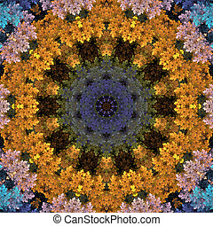 Colorful Mandala Circle