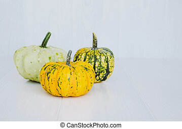 Colorful mini pumpkins on white background. Fall background.