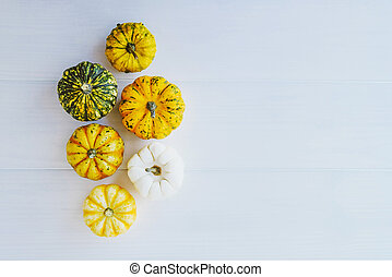 Colorful mini pumpkins on white background, top view.