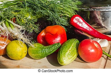 Colorful mix of many different fresh vegetables