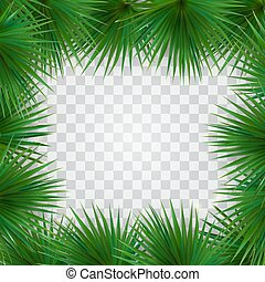 Colorful naturalistic frame from the leaf of the Libistones of Chinese (Southern palm). Vector Illustration.