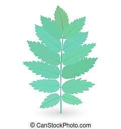 Colorful naturalistic green leaves on branch. Vector Illustration.