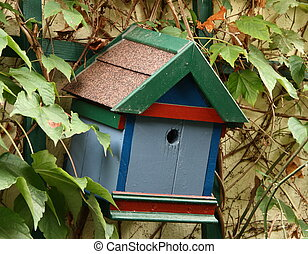Colorful nest box at vine overgrown wall
