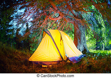 Colorful night bivouac