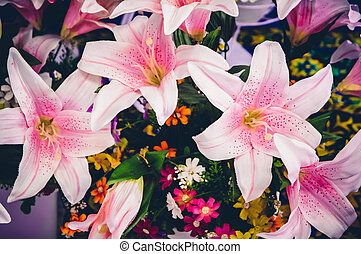 Colorful of flowers