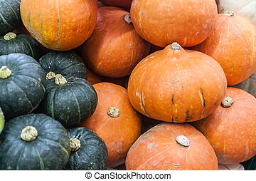 Colorful of pumpkins collection on the autumn market