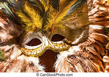 Colorful Orange Yellow Mask Feathers Mardi Gras New Orleans Louisiana