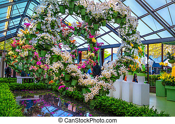 Colorful orchids and spring flowers in the flower shop, Netherlands