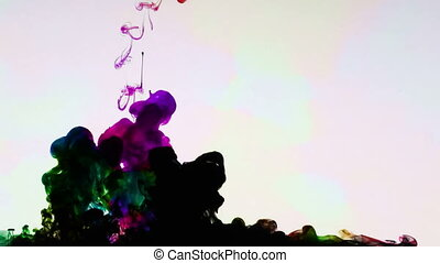 Colorful Paint Ink Drops Splash in