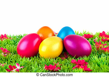 colorful painted easter eggs located on a meadow with flowers