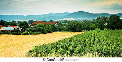 colorful panorama of field with countryside and mountains on the background