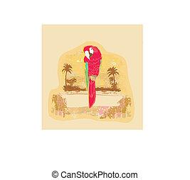 Colorful parrot bird