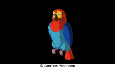 Colorful Parrot Cleans Feathers. Animated footage with alpha...