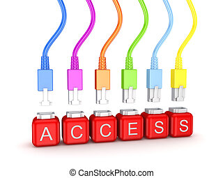 Colorful patchcords and word Access. Isolated on white background.3d rendered.