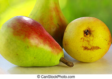 colorful pears on green background