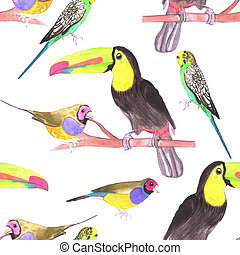 Colorful pet birds perched on a branch- watercolor seamless background