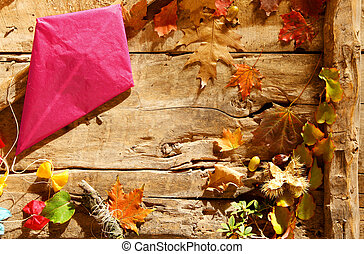 Colorful pink paper kite in an autumn border
