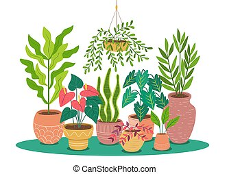 Beautiful background of decorative potted plants. Vector illustration isolated on white background. Design elements easy to edit and rearrange. Landscape format.