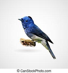 Colorful polygonal bird, Vector, Illustration, Eps File