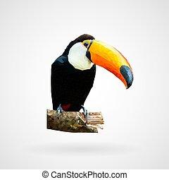 Colorful polygonal toucan bird, Vector, Illustration, Eps...