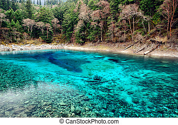 Colorful Pool in Jiuzhaigou