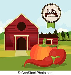colorful poster of organic best food with farm landscape with chilli and pumpkin and apple