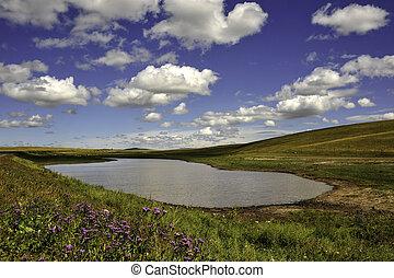 Colorful prairie
