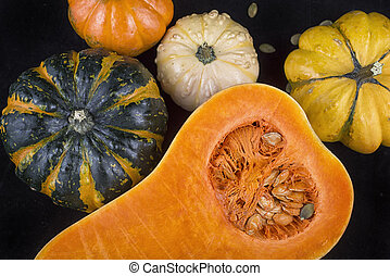 Colorful pumpkins and squash background - Colorful pumpkins...