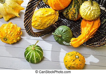 Colorful pumpkins harvested in a wicker basket