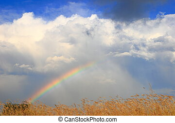 colorful Rainbow with white cloud and sunny sky