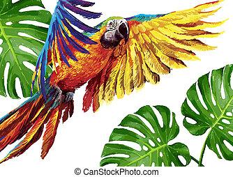 Colorful realistic parrots macaw - Colorful parrots....