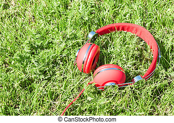 Colorful red headphones on sunlight glade