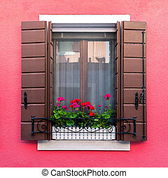 Colorful residential window with blooming flowers in Burano