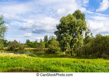 View on river in countryside at sunny day