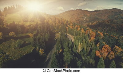 Colorful rocky landscape dense forest aerial view - Colorful...