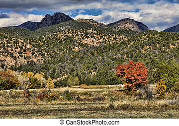 Colorful Rocky Mountain Foothills