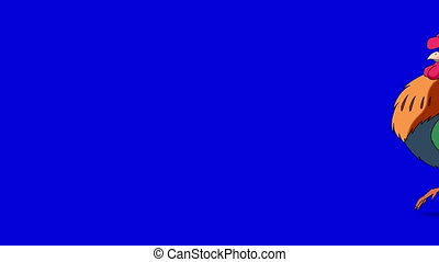 Colorful Rooster Walks and Crows. Classic handmade Animation Isolated on Blue Screen