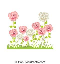 colorful rose bush in pasture floral design