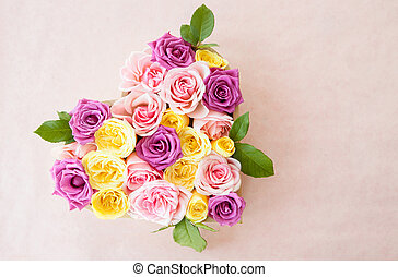 Colorful roses as a background