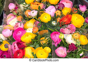 Colorful roses for sale at a market