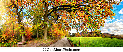 Colorful rural panoramic scenery in autumn