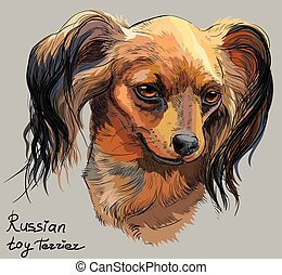 Colorful Russian long-haired toy Terrier vector hand drawing portrait