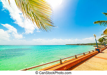 Colorful Sainte Anne shore in Guadeloupe, French west indies. Lesser Antilles, Caribbean sea