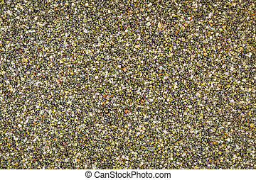 life size macro of colorful sand grain from Black Point Beach, Sonoma County, California