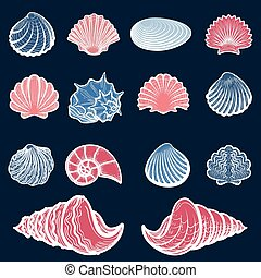 Colorful sea shell set
