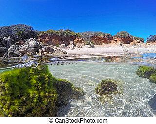 Colorful seabed in Alghero, Sardinia