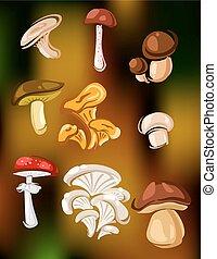 Colorful set of vector mushrooms and fungi
