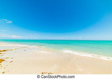 Colorful shore in Miami Beach on a sunny day